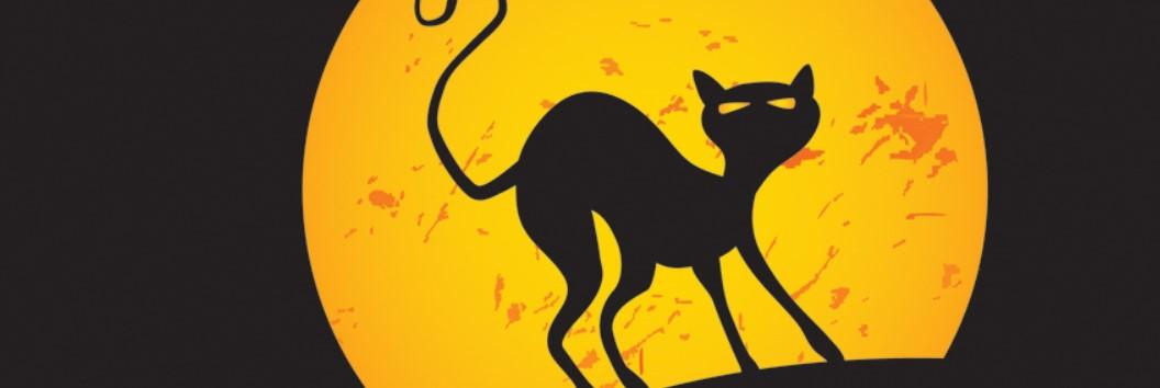 Halloween Black Cat Facebook Cover