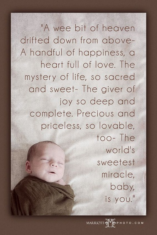 Baby Quotes Mystery