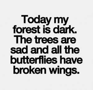 Broken Heart Quotes Wing