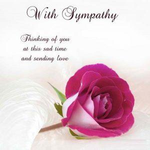 Cute Sympathy Quote