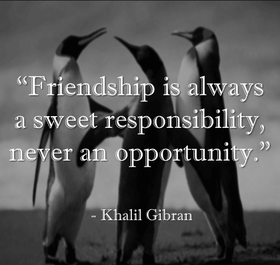 Friendship Quotes Opportunity