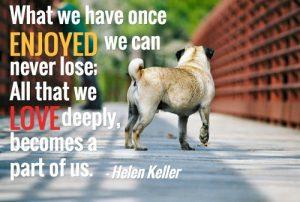 Sympathy Quote Love