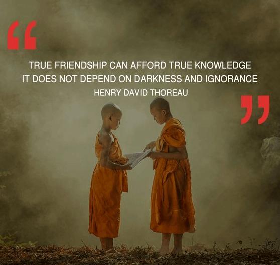 True Friendship Afford Quote