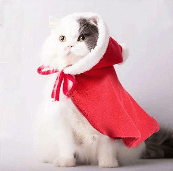 Best Christmas Costumes For Cats