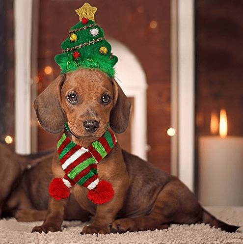 Cheap Christmas Costumes For Pets