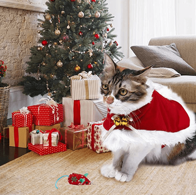 Christmas Pet Costumes For Cats