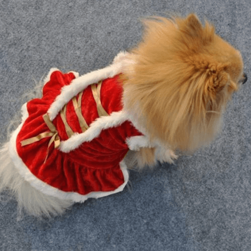 Christmas Pet Costumes For Dogs