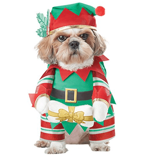 Cute Christmas Costumes For Pets