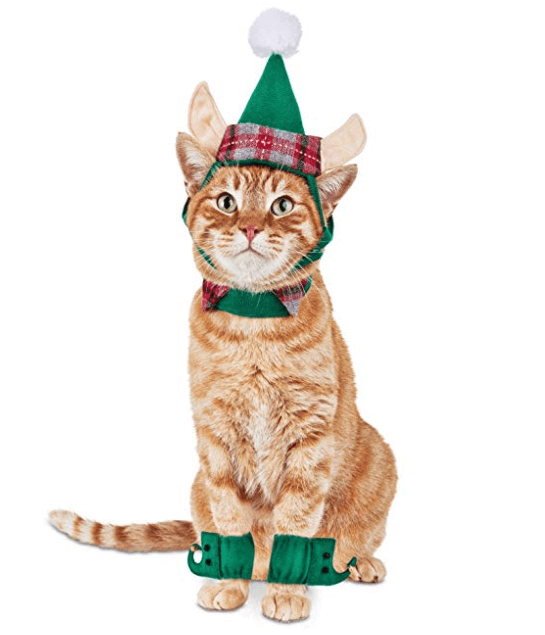 Diy Christmas Costumes For Cats
