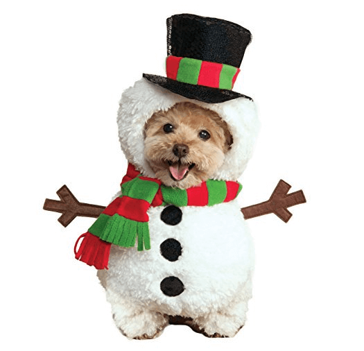 Expensive Christmas Costumes For Pets