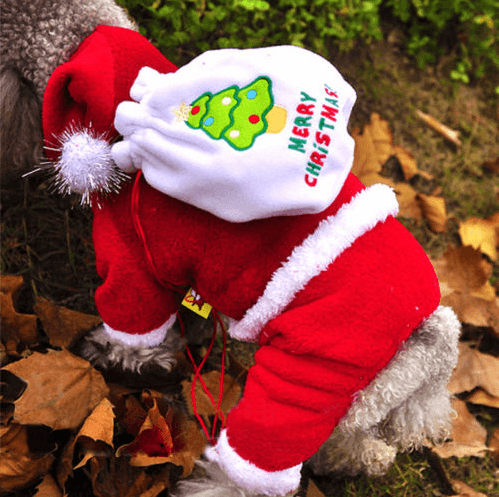 Ideas For Christmas Costumes For Pets
