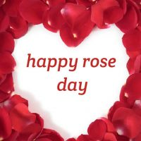 Rose Day 2019 Date