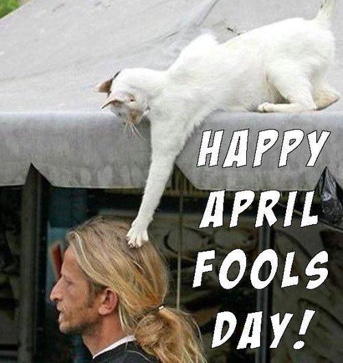 April Fool Day Pranks