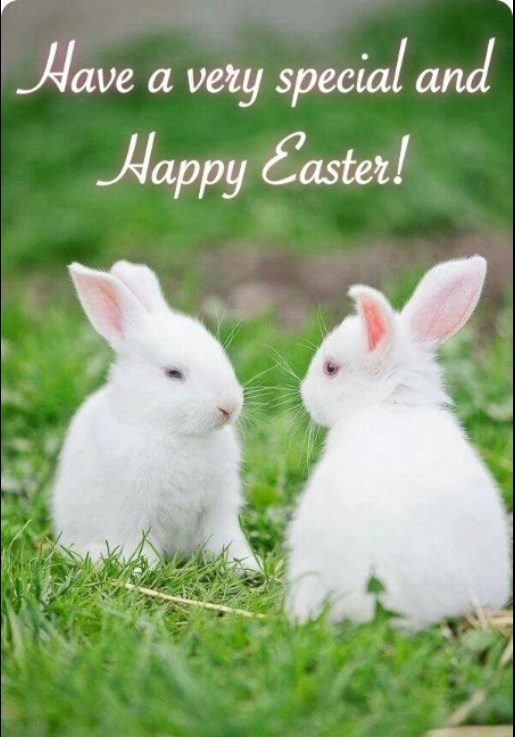 Happy Day After Easter