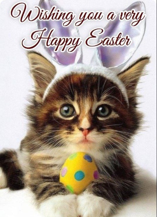 Happy Easter Day Gif
