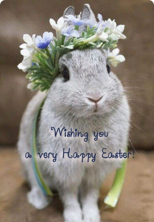 Pictures Of Happy Easter Day