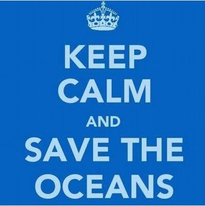World Oceans Day For Schools