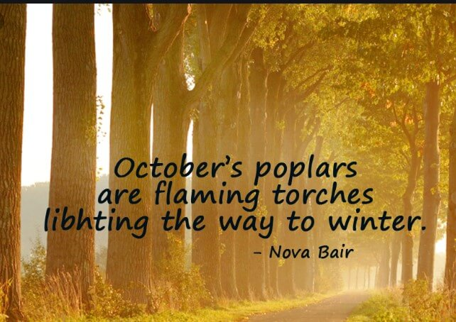 Cute October Quotes