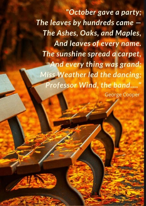 October Daye Quotes